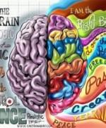 Undivided – Debunking the Right Brain Left Brain Myth